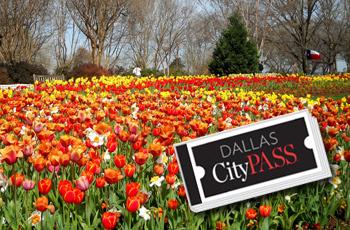 Dallas Arboretum, en el Top 10