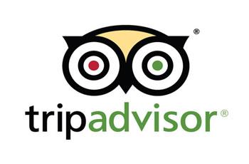 TripAdvisor Dallas
